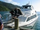 Marlborough Sounds Cruise 'n' Walk