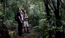 Adventure Puketi - Nature Kauri Forest Walk