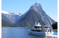 Milford Sound & Cruise