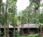 Heritage Lodge & Spa in the Daintree