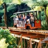 Driving Creek Railway & Potteries - Train Ride