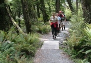Famous Routeburn Track